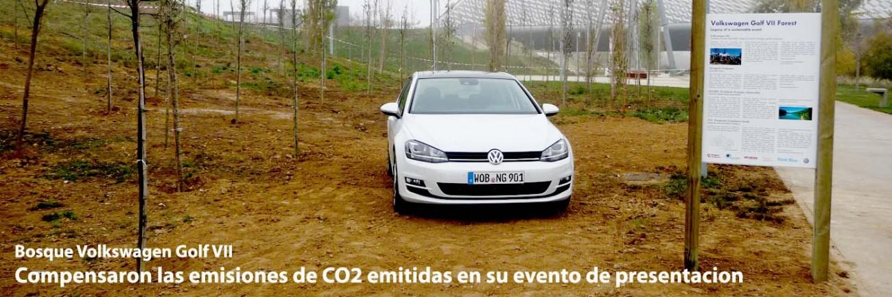 Servicios Porfolio 11 Bosque Volkswagen 02