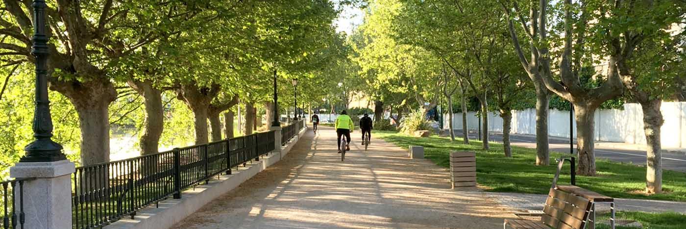 Obras. 17 Anillo Verde de Zaragoza.3.Carlos Martin La Moneda