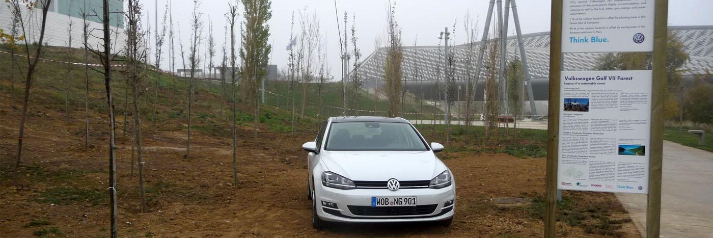 Obras. 21 Bosque Volkswagen.1.Carlos Martin La Moneda